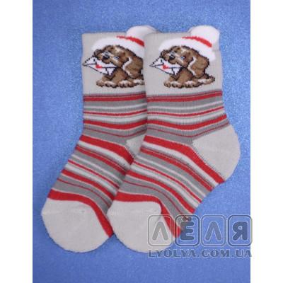 Махровые носочки Собачка серые ТМ Дюна
